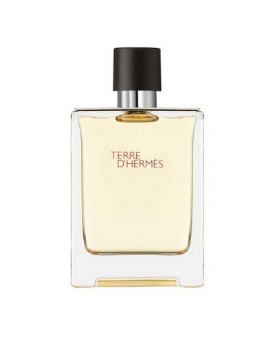 Fragrance Hermès Terre D Hermes Eau De Toilette 100 ML Spray